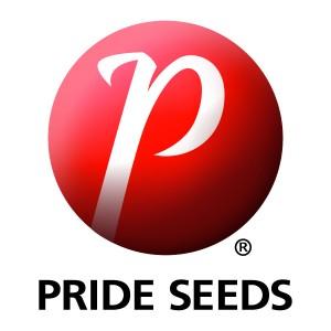 PrideLogo_print